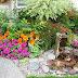 Effective Gardening Design Ideas to Create a Beautiful Environment