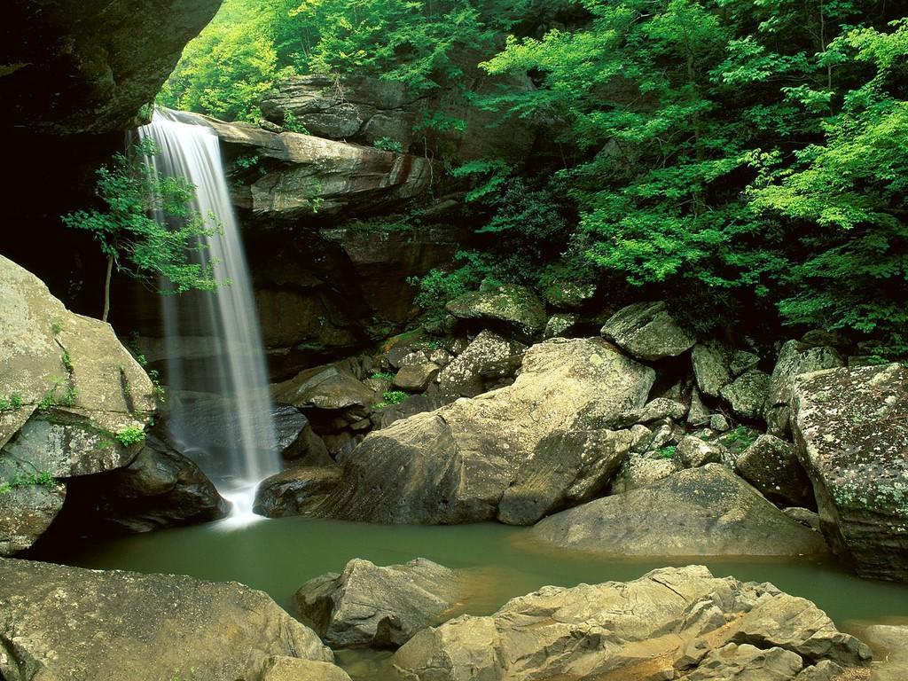 http://4.bp.blogspot.com/-hQi8Oian6Rk/UJaYXXOc2PI/AAAAAAAAA7M/ljL5ooL57JE/s1600/good+nature+wallpapers.jpg