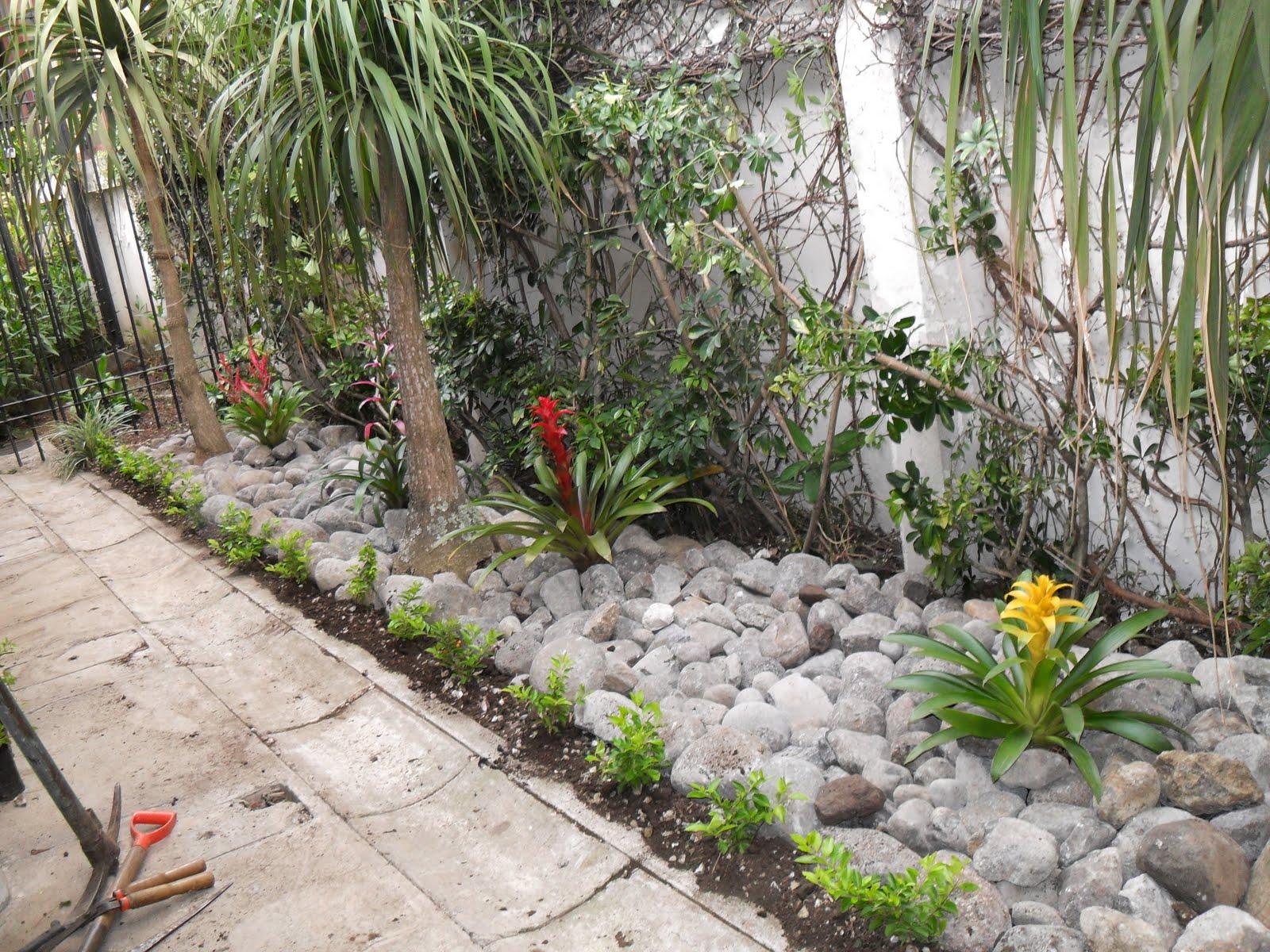 Mantenimiento y dise o de jardines jardin seco for Jardines con canas y piedras