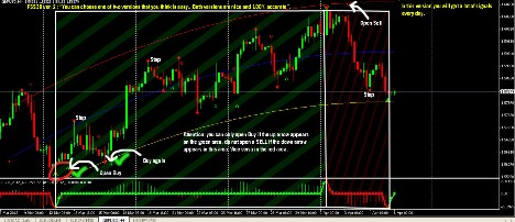 Forex signal 30 ver 2012