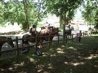 Paseos a caballo Centro Ecuestre La Espina