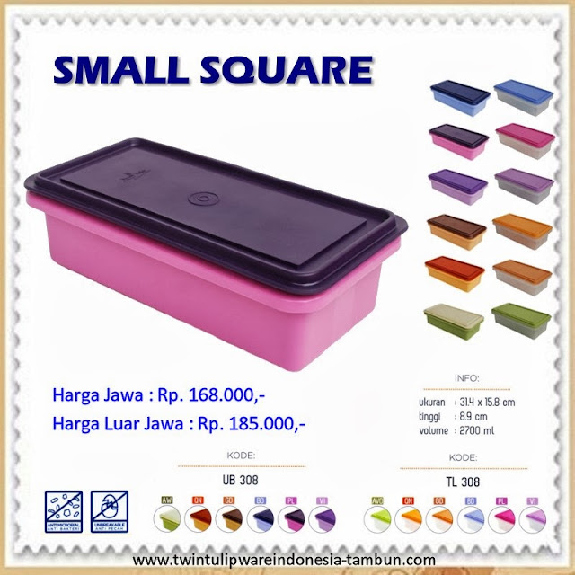 small square tulipware 2013