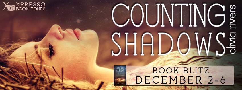 Counting Shadows Book Blitz
