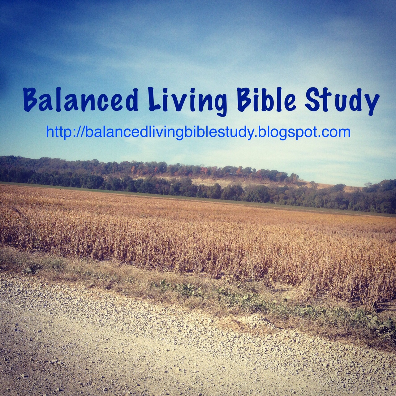 daily bible study guide free download