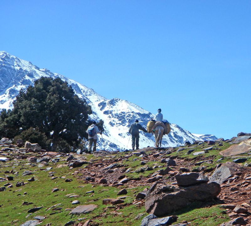 kasbah du toubkal trekking