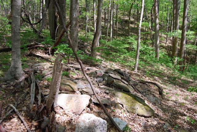 Old homestead foundation at Rock Castle Creek Gorge VA