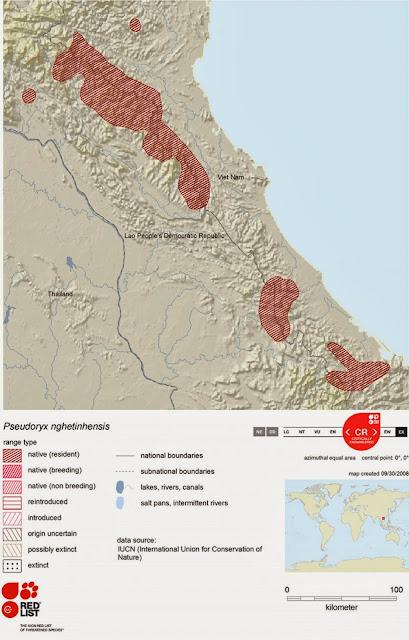 Saola Distribution