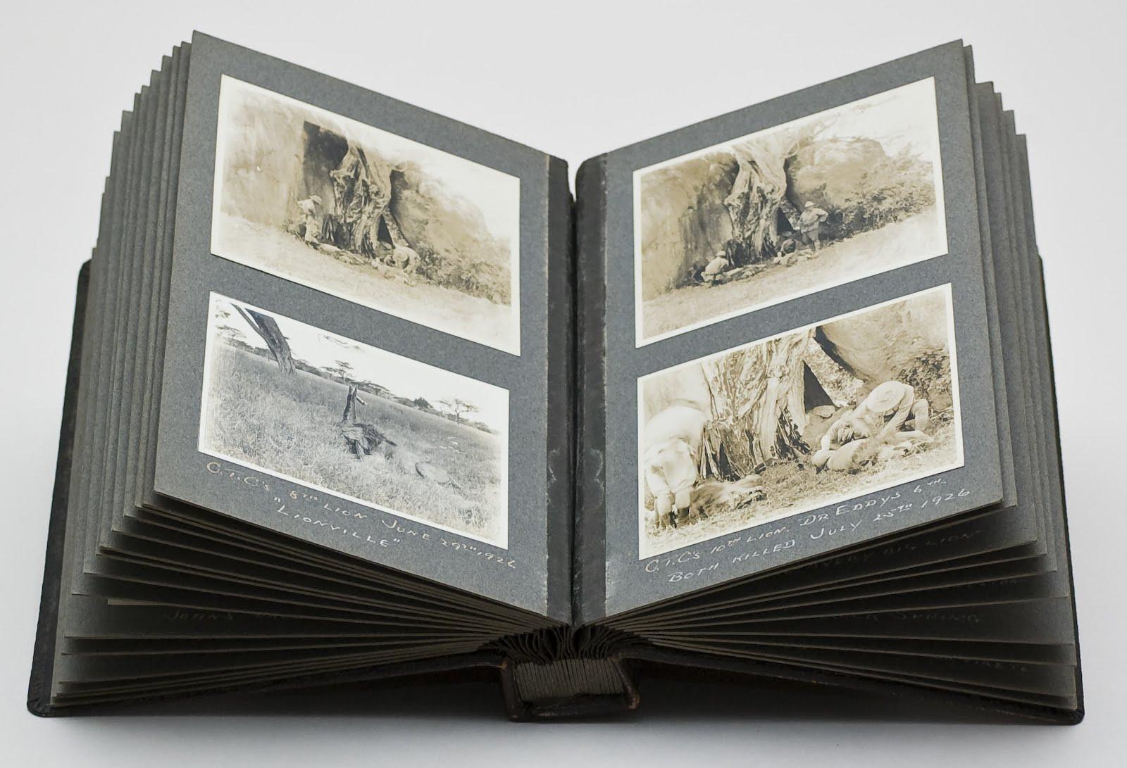 Álbum con imágenes del Falso Profeta de Ap 13,11 Antipapa Benedicto XVI.