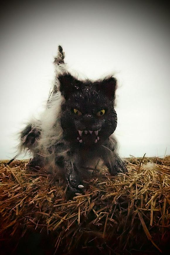 lelijke kat