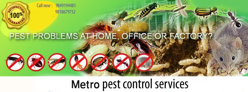 Metro Pest Control Nepal