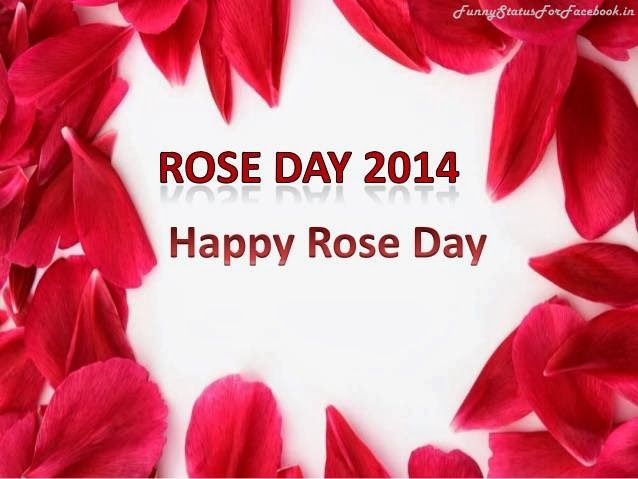 Happy Rose Day Quotes For Facebook !