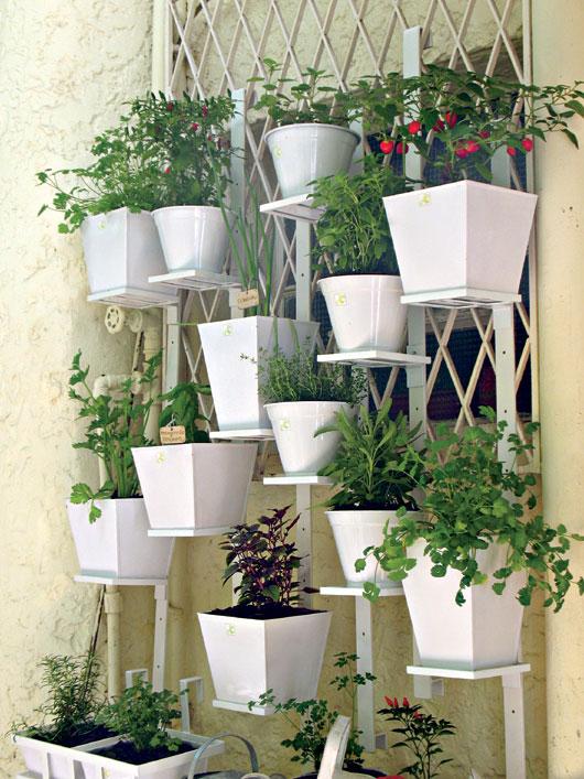 horta em jardim vertical ? Doitri.com