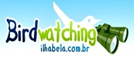 Birdwatching Ilhabela