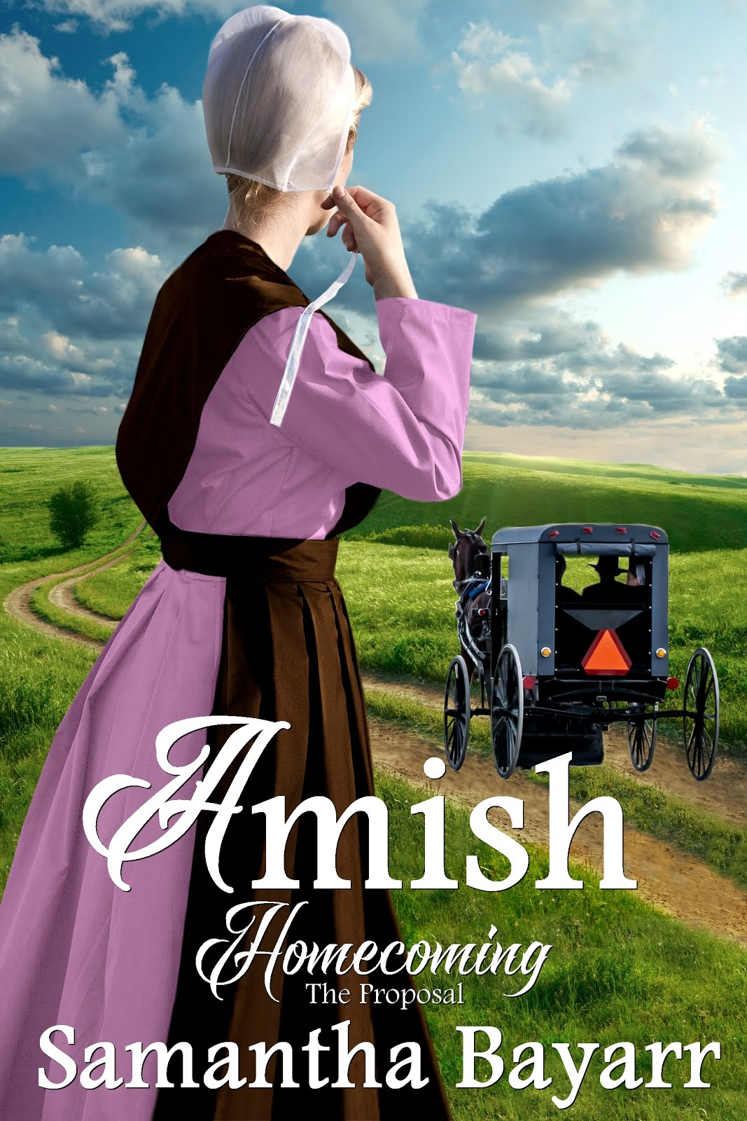 Amish Homecoming: The Proposal