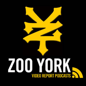Zoo York Yellow and Black Logo