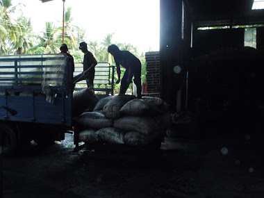 Arang diturunkn di kilang, Perak