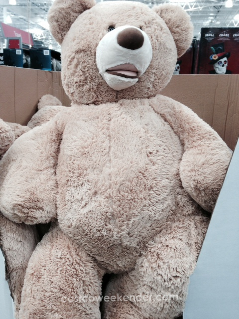 Everything in Costco is large size...even teddy bears!