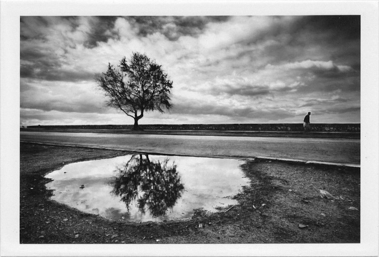 dirty photos - et - a black and white photo of tree reflection and man walking in rethymno
