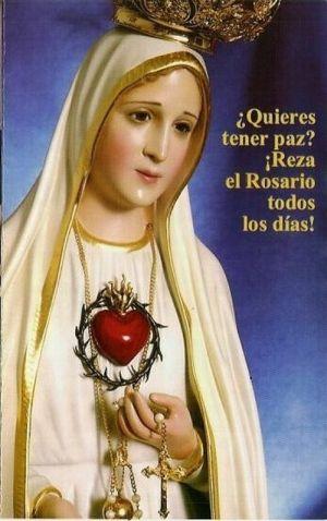 Imágenes de la Virgen de Guadalupe   Las más hermosas