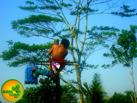 Panjat pinang / bambu di Dusun Gardu ( REGAZ) HUT RI ke 70