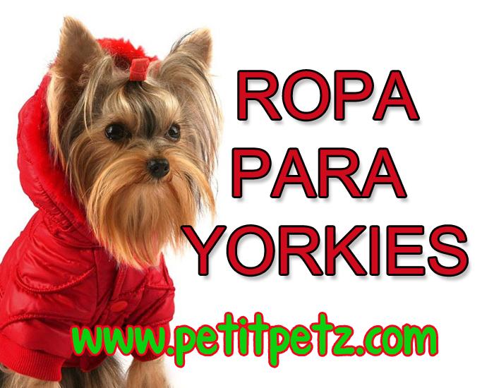 arnes para perros yorkshire