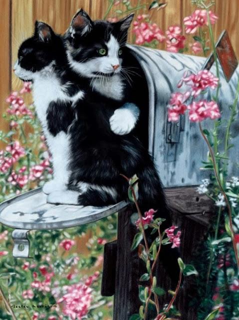 две кошки на потовых ящиках