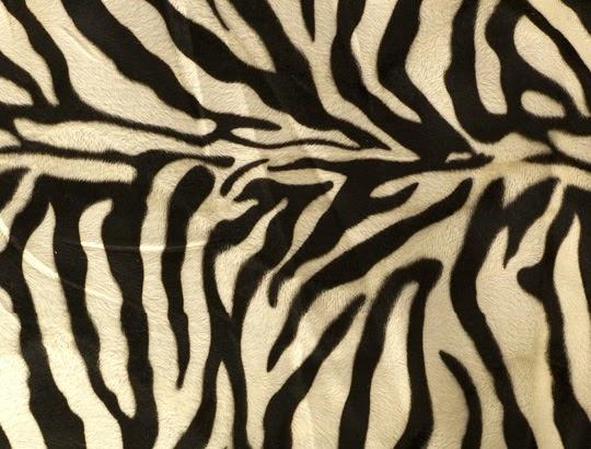 Zebra pälsimitation hos skapamer.se | www.var-dags-rum.se