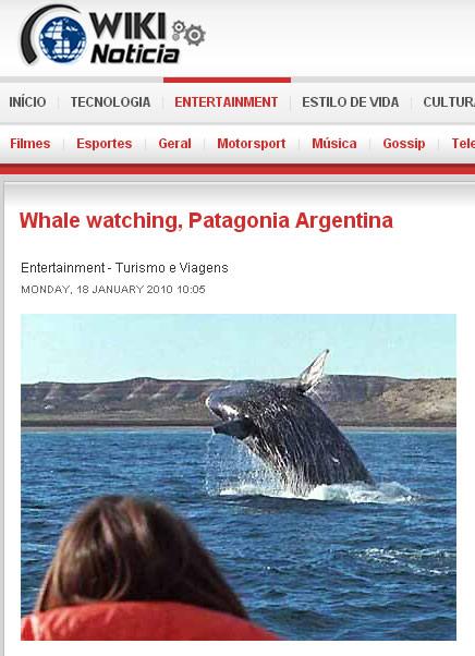 observacao da baleia franca em Peninsula Valdes Puerto Piramides