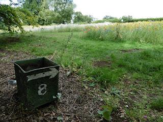 Photo of Luton Minigolf Meadows in Wardown Park