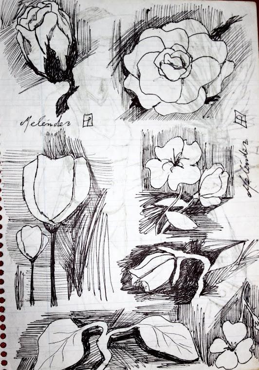 Varias flores 1