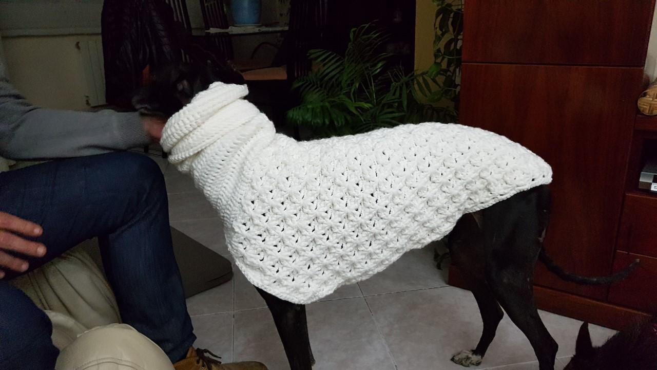 Roba de ganxet per a gossos