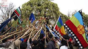 Libertad a los Presos Políticos Mapuche!