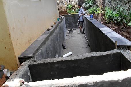 batualam palimanan: membuat kolam ikan koi