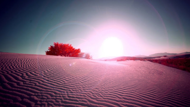 Pink Desert Flare HD Wallpaper