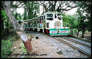 Van Rani Sanjay Gandhi National Park Borivali Mumbai