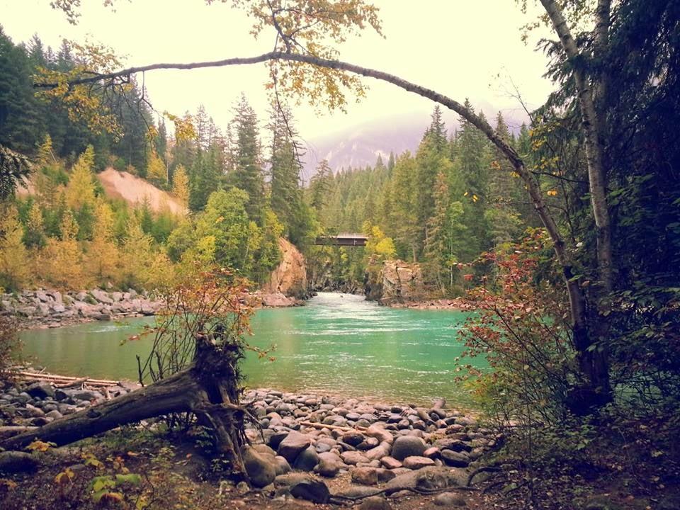 Fraser R. at Mt Robson, B.C.