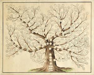 Árboles genealógicos