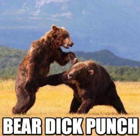 bear+dick.jpg