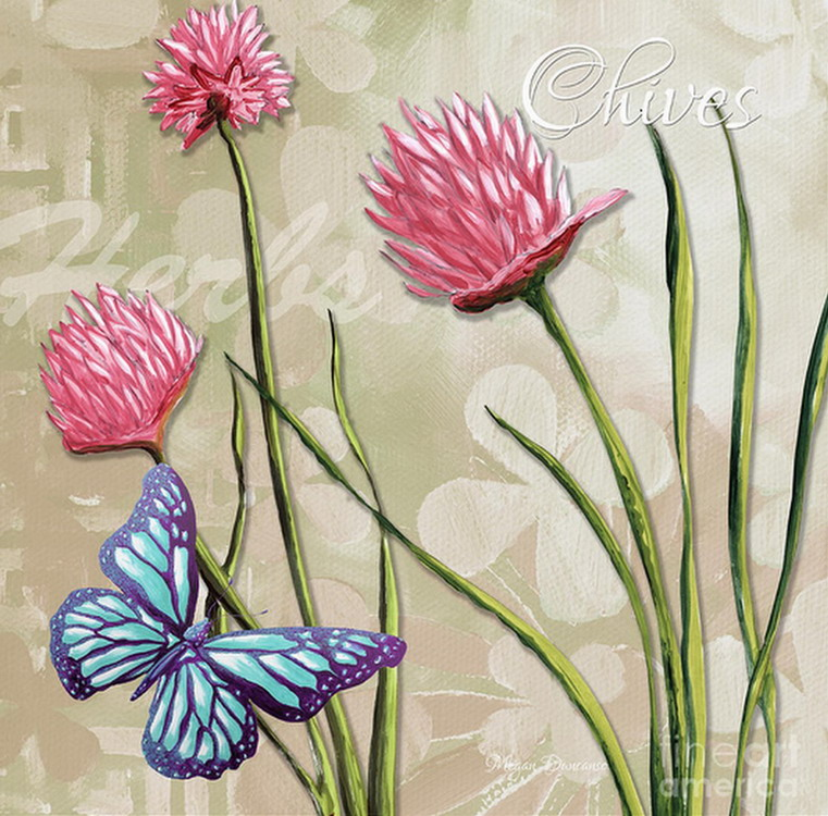 Cuadros pinturas oleos mariposas en leo pinturas - Cuadros flores modernas ...