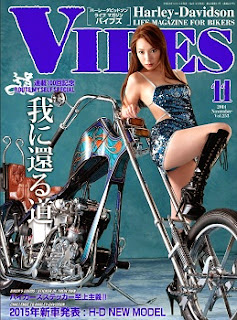 バイブズ 2014年11月号 (VIBES 2014-11) zip rar Comic dl torrent raw manga raw