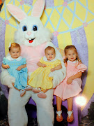 Easter Bunny Pictures! easter bunny