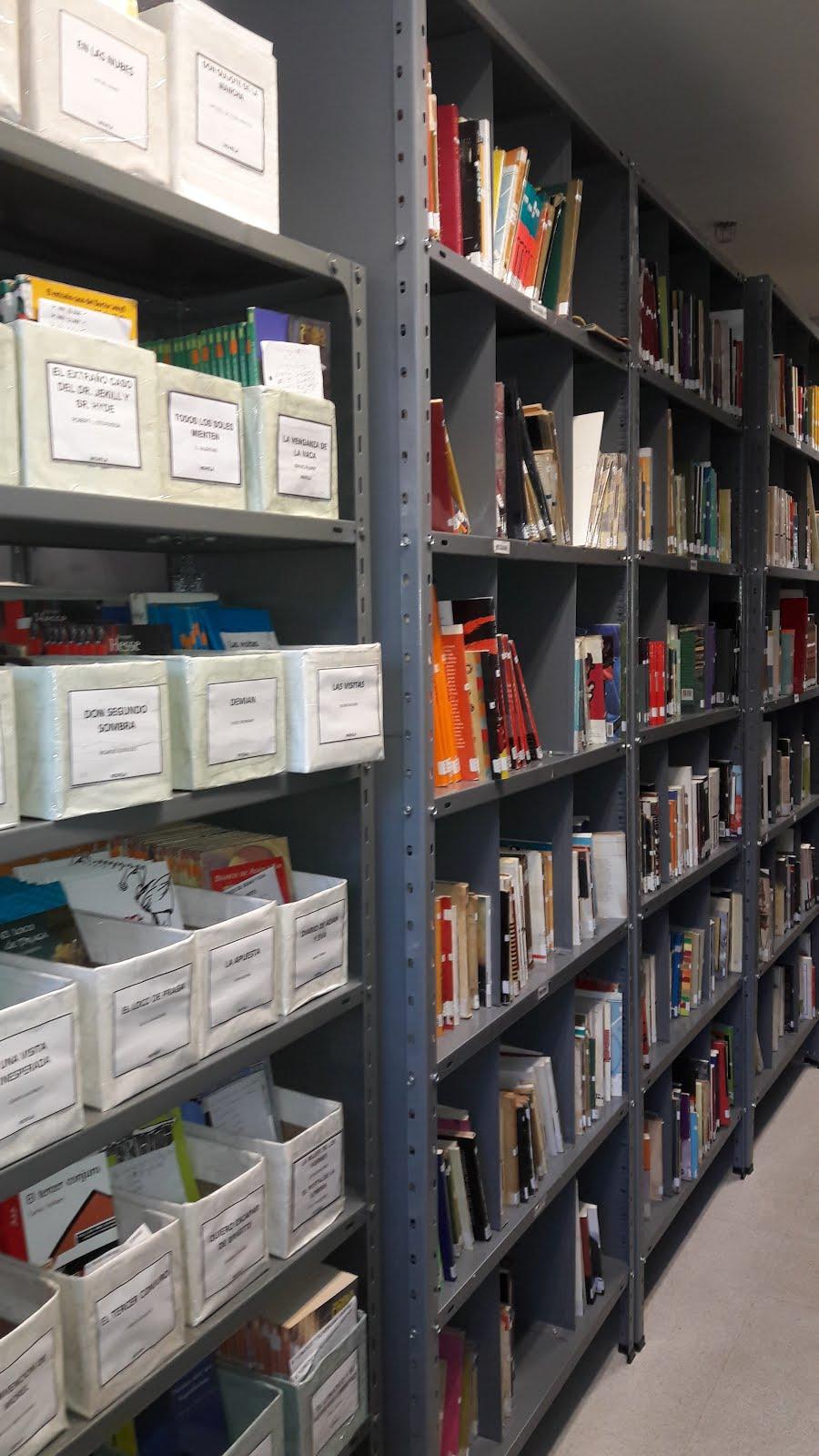 Biblioteca estanterías y anaqueles (2)