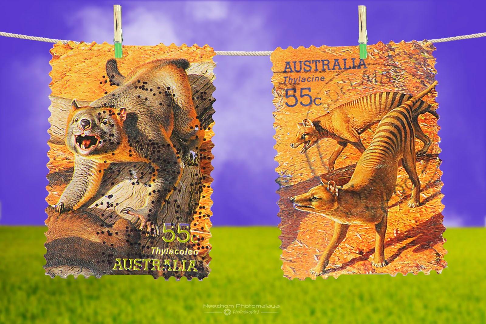 Australia 2008 Mega Fauna stamps - Thylacoleo 55c, Thylacine 55c
