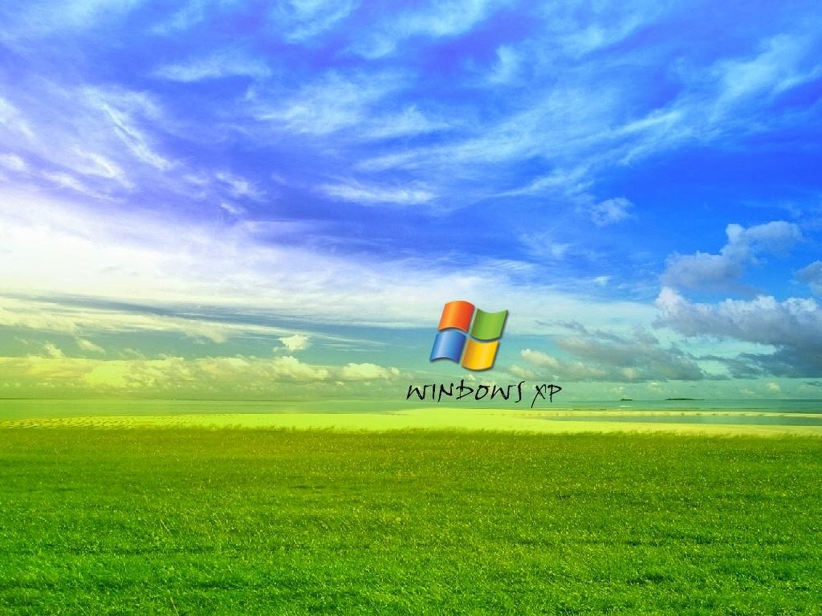 grass windows xp wallpapers