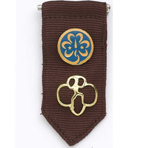 girl scout troop 234 brownie uniform