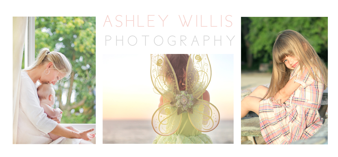 Ashley Willis Photography
