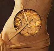Digestión, alimentación y ritmo circadiano