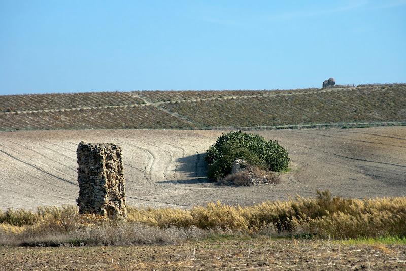 Cañada de Los Arquillos. Loma de la Rendona