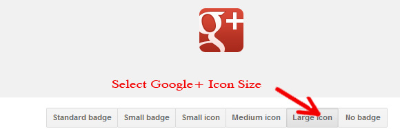 Google+ Icon Size